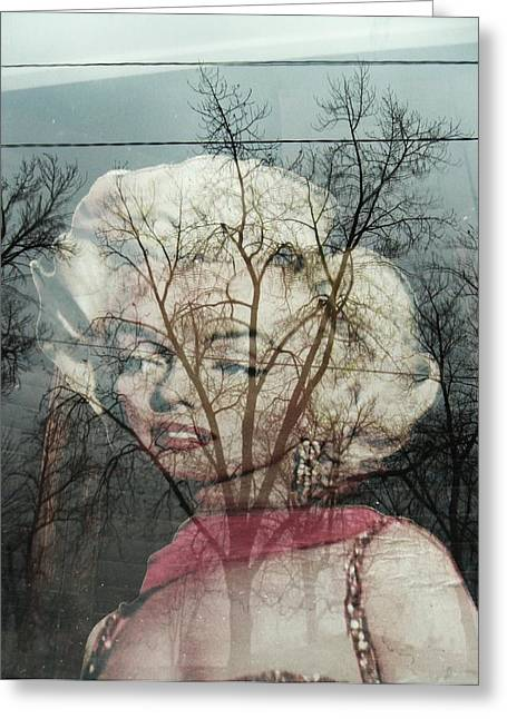 Todd Sherlock Greeting Cards - The Ghost of Norma Jean Greeting Card by Todd Sherlock