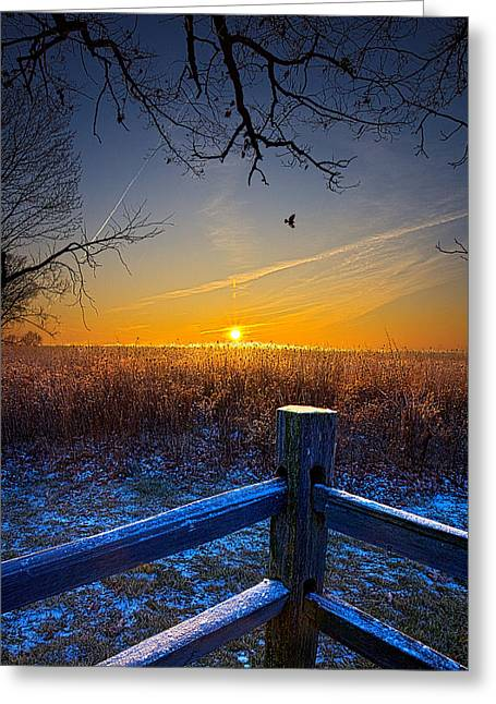 Geographic Greeting Cards - The Gift Greeting Card by Phil Koch