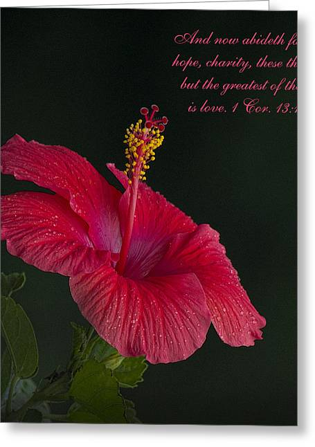 The Greatest Of These Is Love Greeting Card by Kathy Clark
