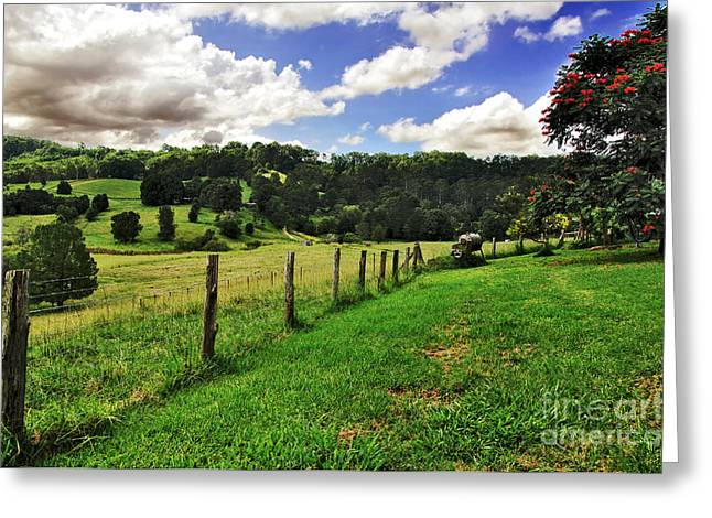The Green Green Grass of Home Greeting Card by Kaye Menner