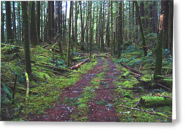 Moss Green Pyrography Greeting Cards - The Green Mile Greeting Card by Shawn Hegan