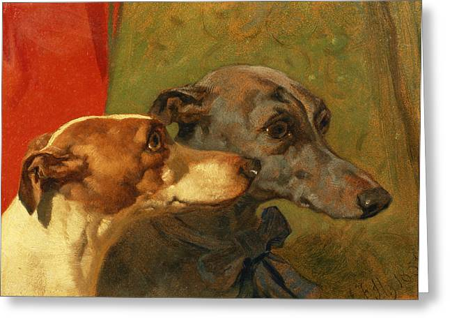 Greyhound Dog Paintings Greeting Cards - The Greyhounds Charley and Jimmy in an Interior Greeting Card by John Frederick Herring Snr