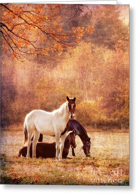 Maine Farms Greeting Cards - The Guardians Greeting Card by Darren Fisher
