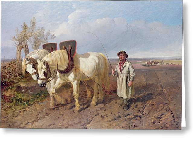 Horse Whip Greeting Cards - The Harrowing Team Greeting Card by John Frederick Herring Snr