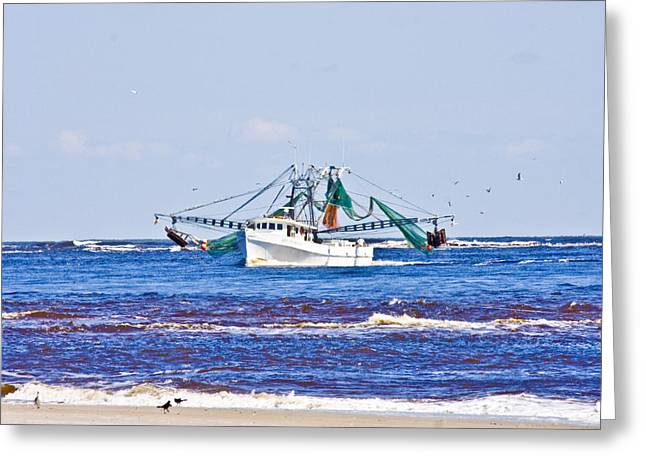 Topsail Island Greeting Cards - The Harvest Greeting Card by Betsy C  Knapp