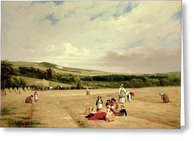 Frederick Greeting Cards - The Harvest Field Greeting Card by William Frederick Witherington