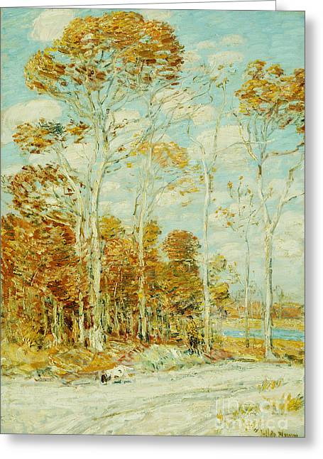 Rural Road Greeting Cards - The Hawks Nest Greeting Card by Childe Hassam
