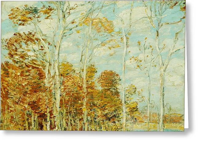 The Hawk's Nest Greeting Card by Childe Hassam