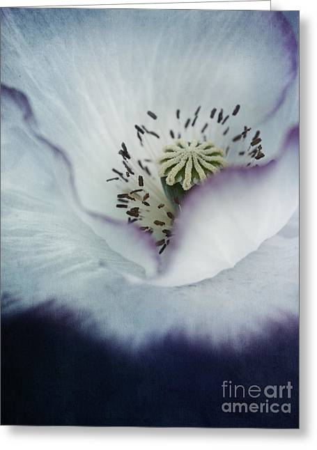 Pistils Greeting Cards - The Heart Of A Poppy Greeting Card by Priska Wettstein