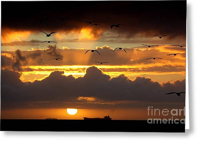 Photographs With Red. Greeting Cards - The Heavens Greeting Card by Johanne Peale