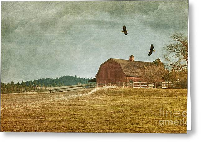 Old Barns Mixed Media Greeting Cards - The Homecoming Greeting Card by Reflective Moments  Photography and Digital Art Images