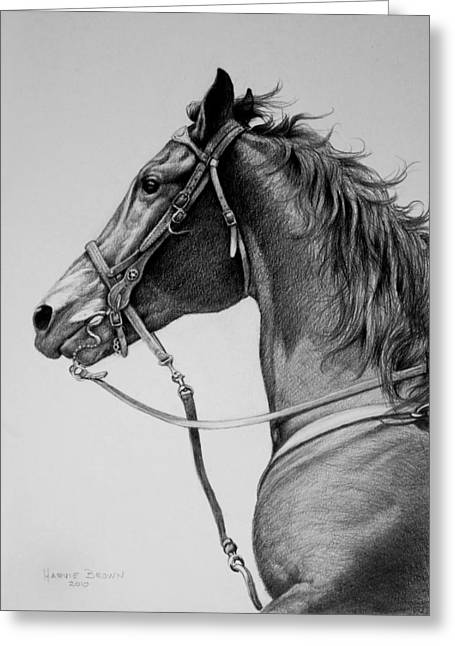 Closeups Drawings Greeting Cards - The Horse Greeting Card by Harvie Brown