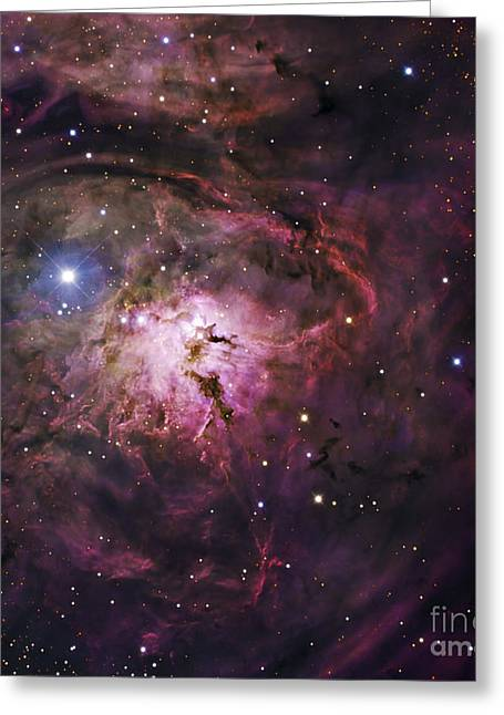 Interstellar Space Greeting Cards - The Hourglass Nebula Greeting Card by Robert Gendler