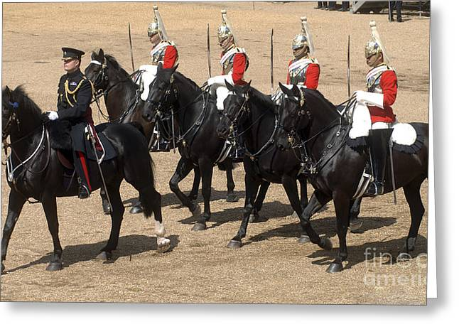 Horse Images Greeting Cards - The Household Cavalry Performs Greeting Card by Andrew Chittock