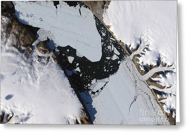 Floating Ice Sheet Greeting Cards - The Ice Island That Calved Greeting Card by Stocktrek Images