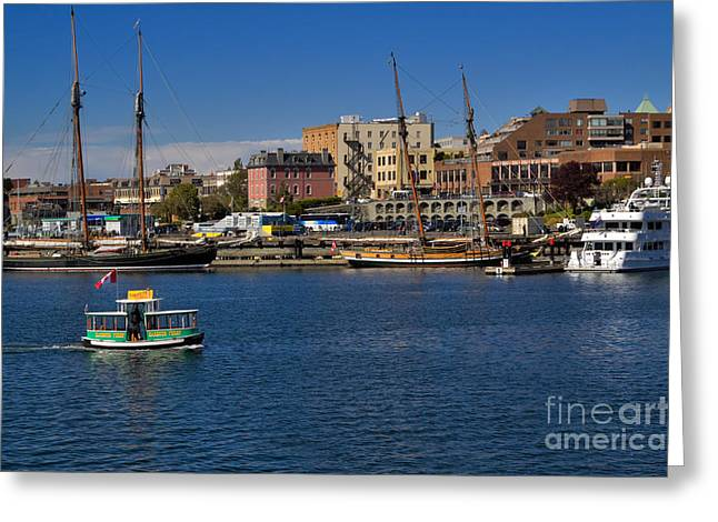 Tall Ships On Water Greeting Cards - The Inner Harbour in Victoria Canada Greeting Card by Louise Heusinkveld