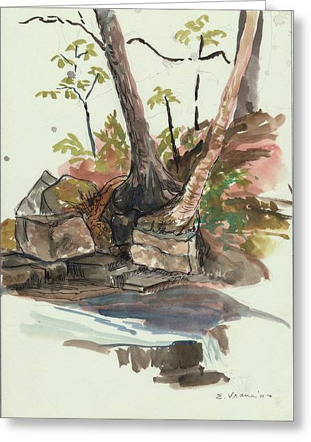 Woodland Scenes Drawings Greeting Cards - The Jessup Indian Lake NY Greeting Card by Ethel Vrana