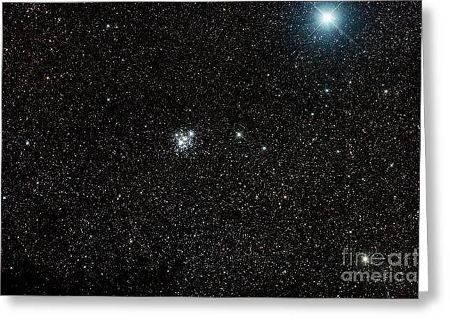 Open Clusters Greeting Cards - The Jewel Box, Open Cluster Ngc 4755 Greeting Card by Philip Hart
