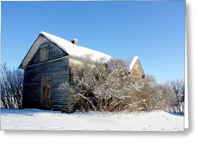 Edmonton Photographer Greeting Cards - The Johnsons Greeting Card by Jerry Cordeiro