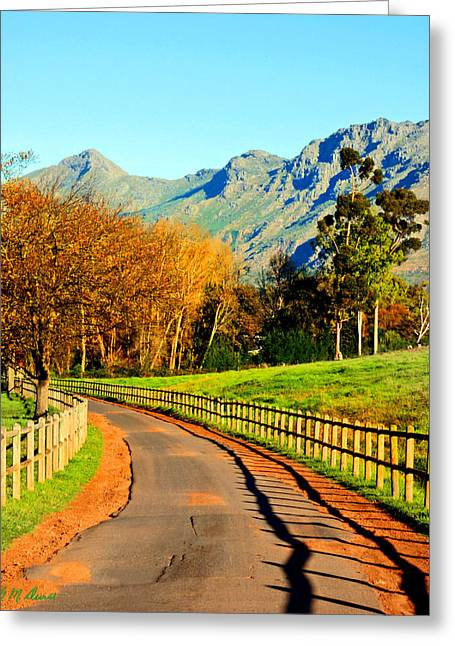 Cape Town Greeting Cards - The Journey Greeting Card by Michael Durst
