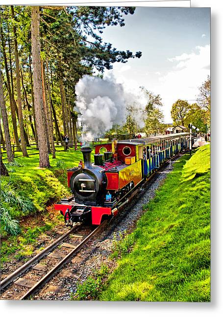 Express Greeting Cards - The Jumbo Express Greeting Card by Chris Thaxter