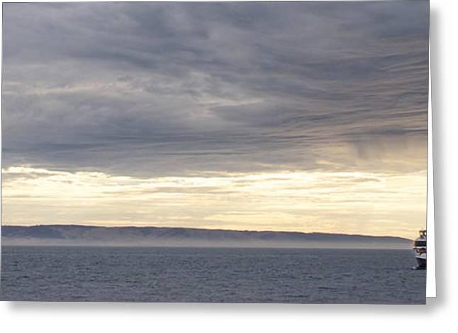 Kangaroo Island Greeting Cards - The Kangaroo Island Sealink Ferry Greeting Card by Brooke Whatnall