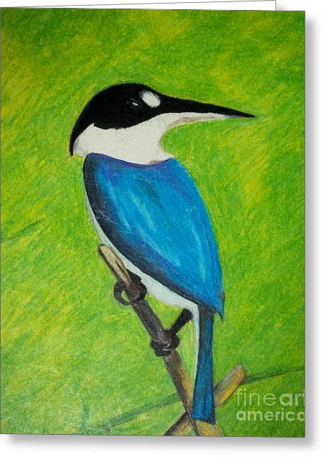 Pecking Drawings Greeting Cards - The King Fisher Greeting Card by Jack Norton