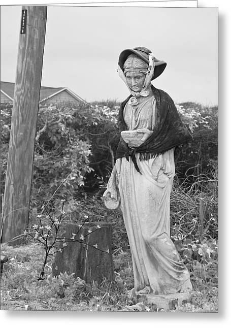 Topsail Island Greeting Cards - The Lady of Topsail Greeting Card by Betsy A  Cutler