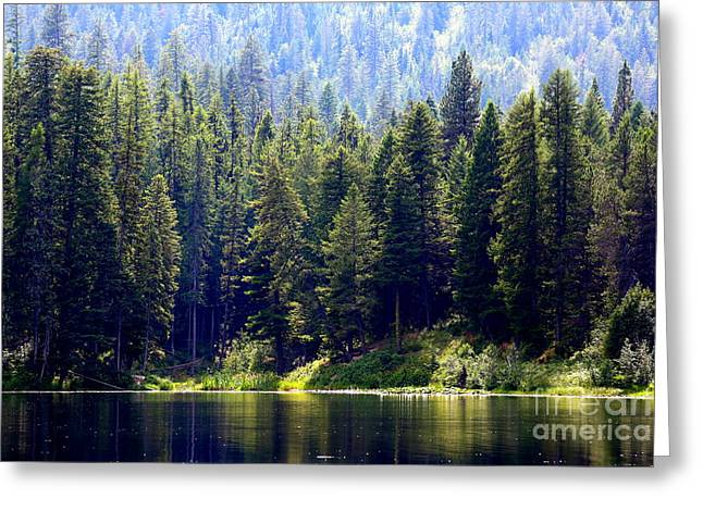 Sofa Art Greeting Cards - The Lake Greeting Card by Carol Groenen