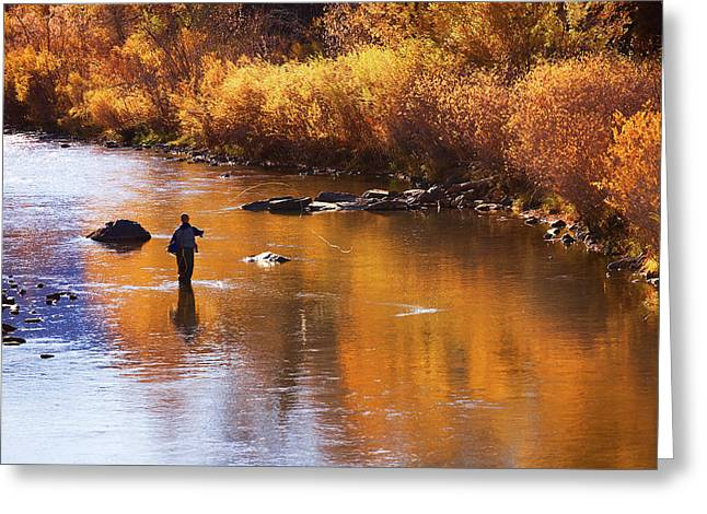 A River In Autumn Greeting Cards - The Last Hurrah Greeting Card by Jim Garrison