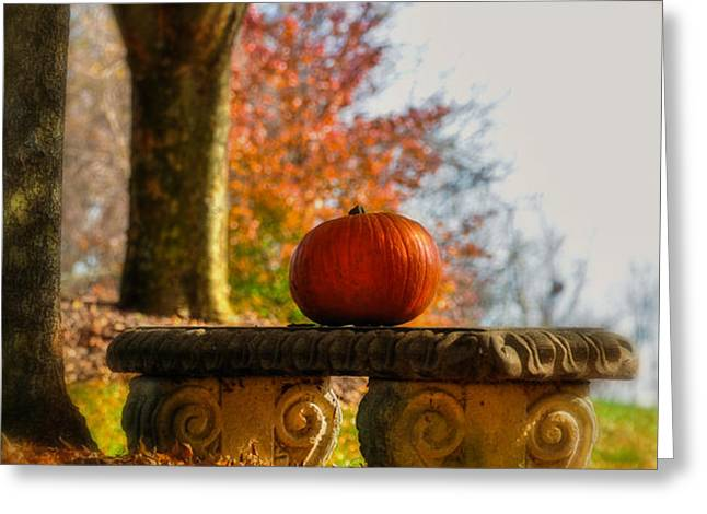 The Last Pumpkin Greeting Card by Lois Bryan