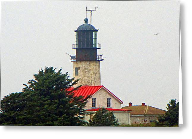 Cape Flattery Greeting Cards - The Lighthouse of Tatoosh Greeting Card by Roger Reeves  and Terrie Heslop