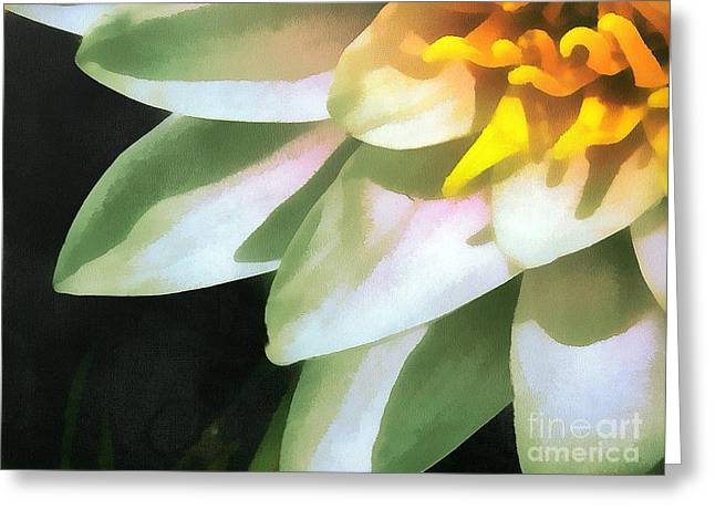 Dewdrops Paintings Greeting Cards - The lily flower Greeting Card by Odon Czintos