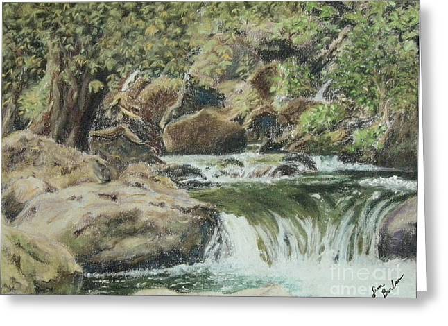 Rapids Pastels Greeting Cards - The Little Waterfalls Greeting Card by Jim Barber Hove