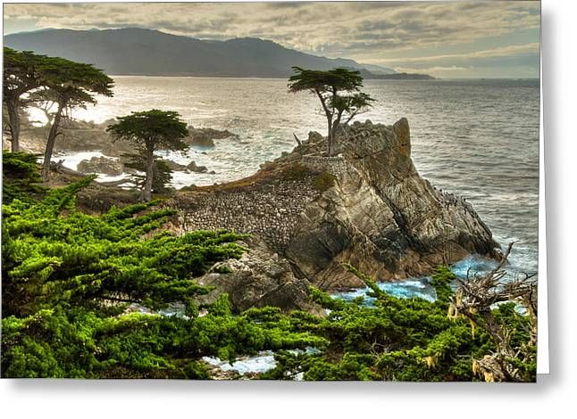 Hdr Look Greeting Cards - The Lone Cypress Carmel California Greeting Card by Connie Cooper-Edwards