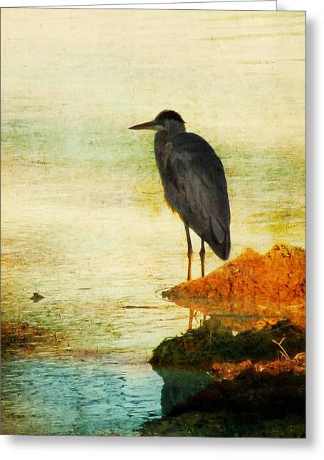 Wading Bird Greeting Cards - The Lonely Hunter Greeting Card by Amy Tyler