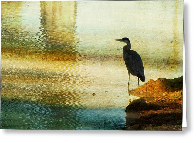Wading Bird Greeting Cards - The Lonely Hunter II Greeting Card by Amy Tyler