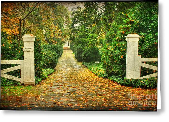 The Long Lonely Path Greeting Card by Darren Fisher