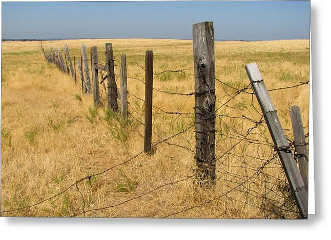 The Long Long Fence Greeting Card by Lydia Warner Miller