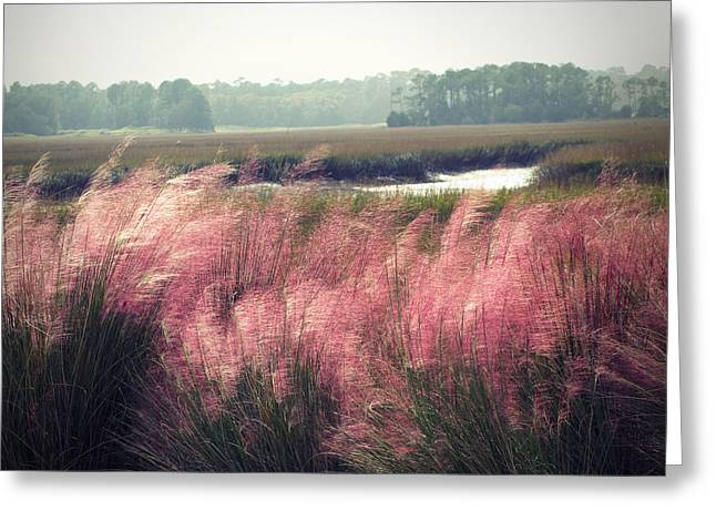 Kiawa Island Greeting Cards - The Lowlands Greeting Card by Amy Tyler