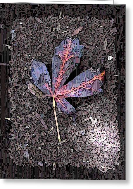 Jagged Border Greeting Cards - The Maple 5 Greeting Card by Tim Allen