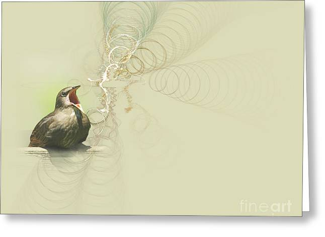 Blackbirds Greeting Cards - The Mechanical Energy of Sound Greeting Card by Jan Piller