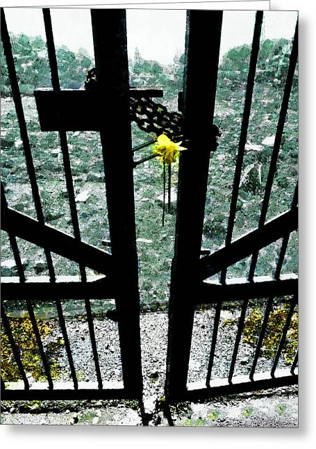 Queenspark Greeting Cards - The Memorial Gates Greeting Card by Steve Taylor