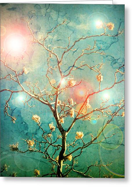 Tara Turner Greeting Cards - The Memory of Dreams Greeting Card by Tara Turner
