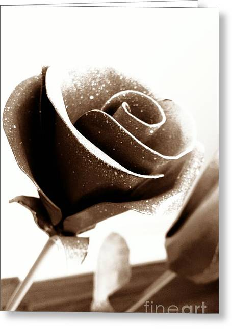 Flower Photos Pyrography Greeting Cards - The Metal Rose Greeting Card by Erik Johnson