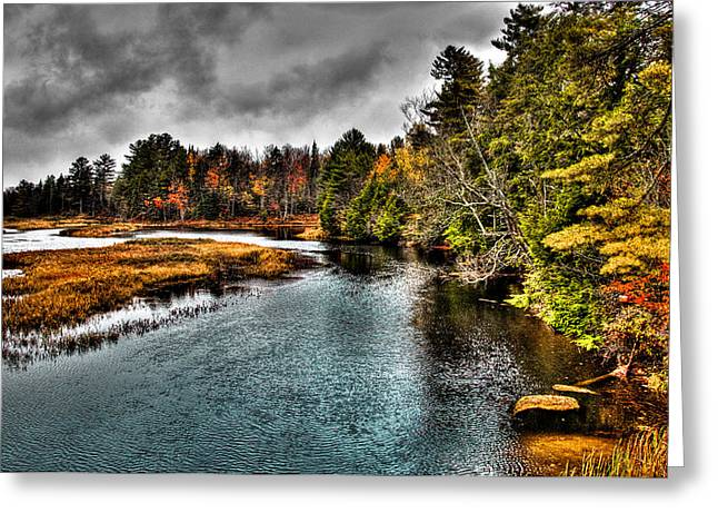 Fir Trees Greeting Cards - The Moose River in Old Forge Greeting Card by David Patterson