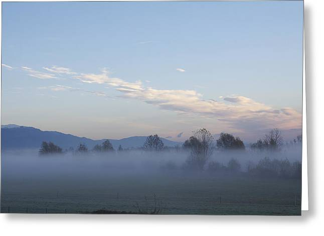 Nebbia Greeting Cards - The Morning Fog Greeting Card by Donato Iannuzzi