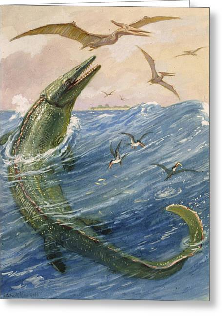 National Geographic Society Art Greeting Cards - The Mosasaurus Species Lived In Kansas Greeting Card by Charles R. Knight