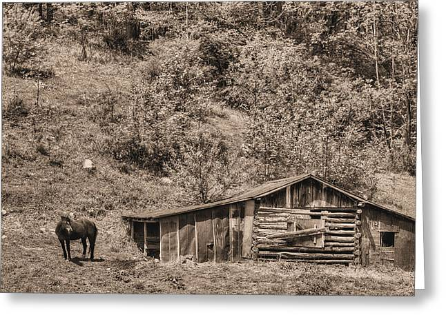 The Mountain Retreat Bw Greeting Card by JC Findley