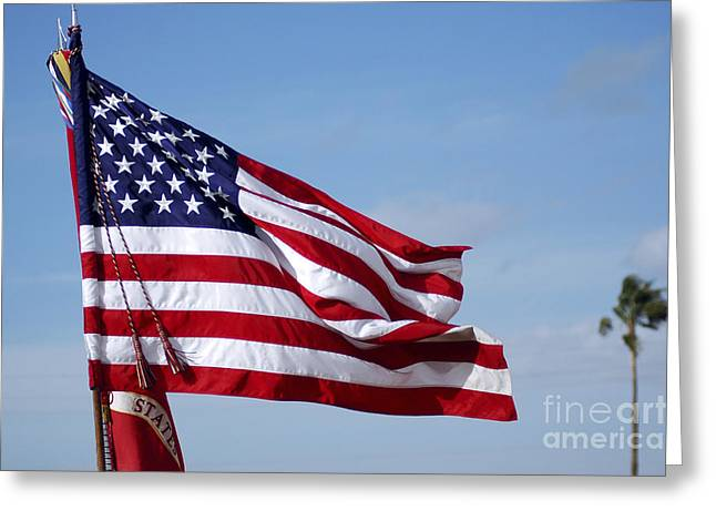 Stripes. Blowing Greeting Cards - The National Colors And Official Colors Greeting Card by Stocktrek Images